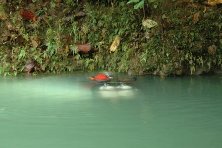 Marc a Balogo Spring, risorgenza di Langun