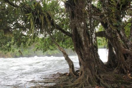 Calbiga river