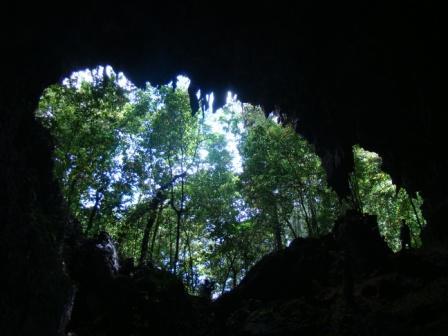 ingresso in foresta a 3 ore da Canlobo
