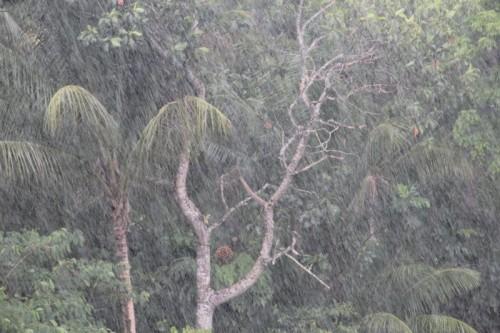 ancora pioggia con i colori di un quadro impressionista