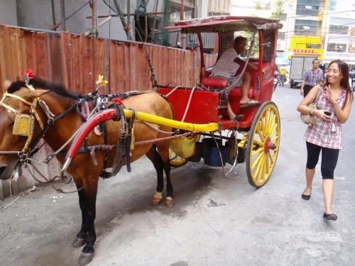 Kalesa tirata da cavallo schiumante per l'afa